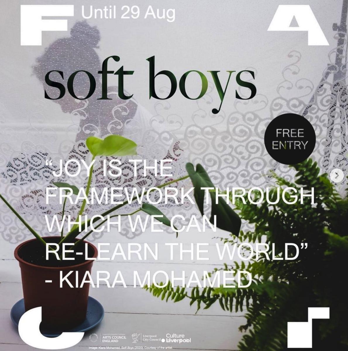 Until 29 Aug Soft Boys (FACT)